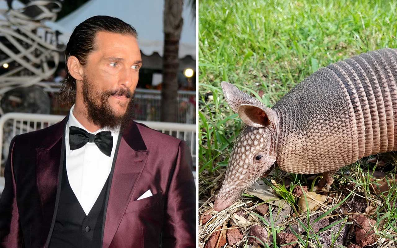 Matthew McConaughey, Armadillo capturer, golf course, facts, fame, life, people, celebrities