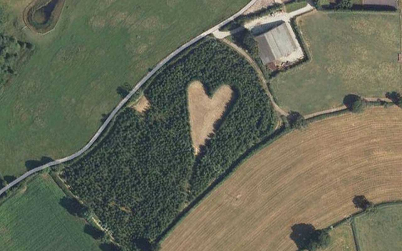 heart shaped forest, widower, facts, life, people, weird, smile, love