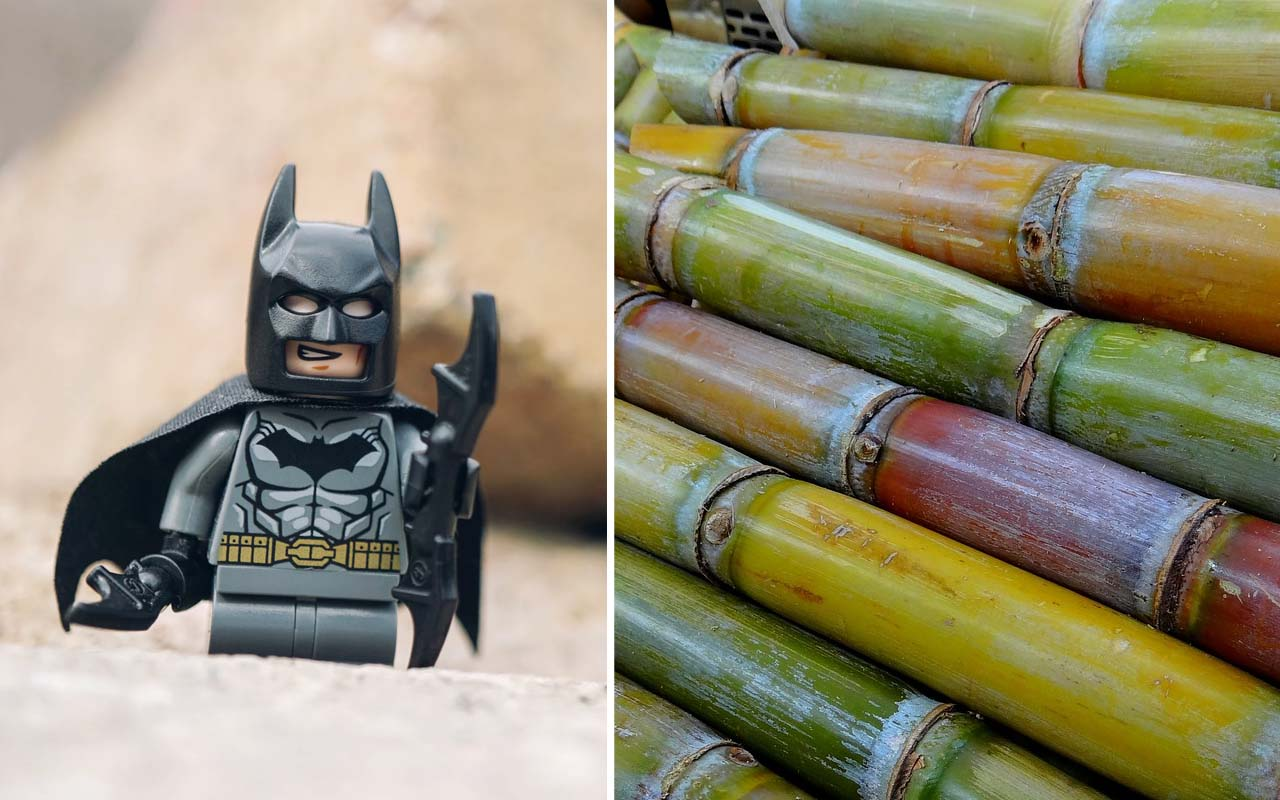 Batman, LEGO, games, toys, facts, humanity, nature, environment, facts