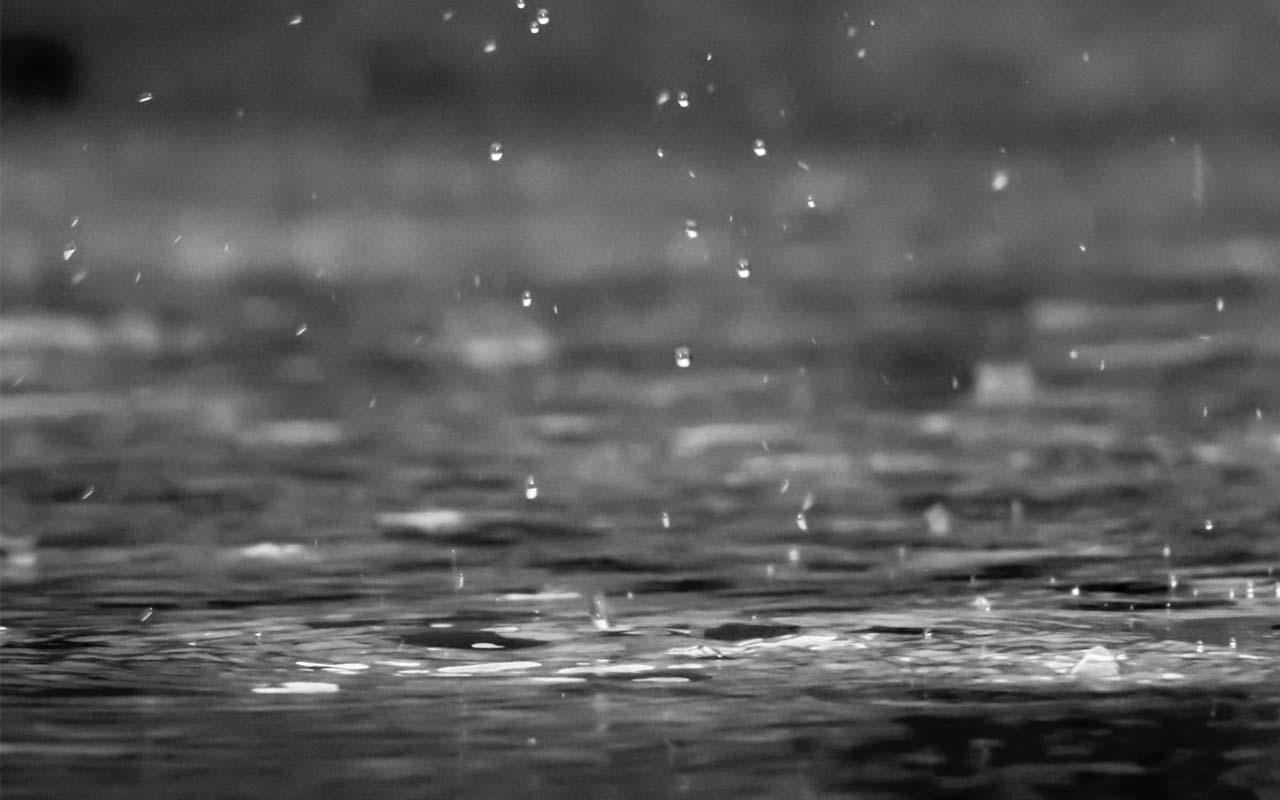 rain, vitamins, B12, facts, random, tell, people, friends