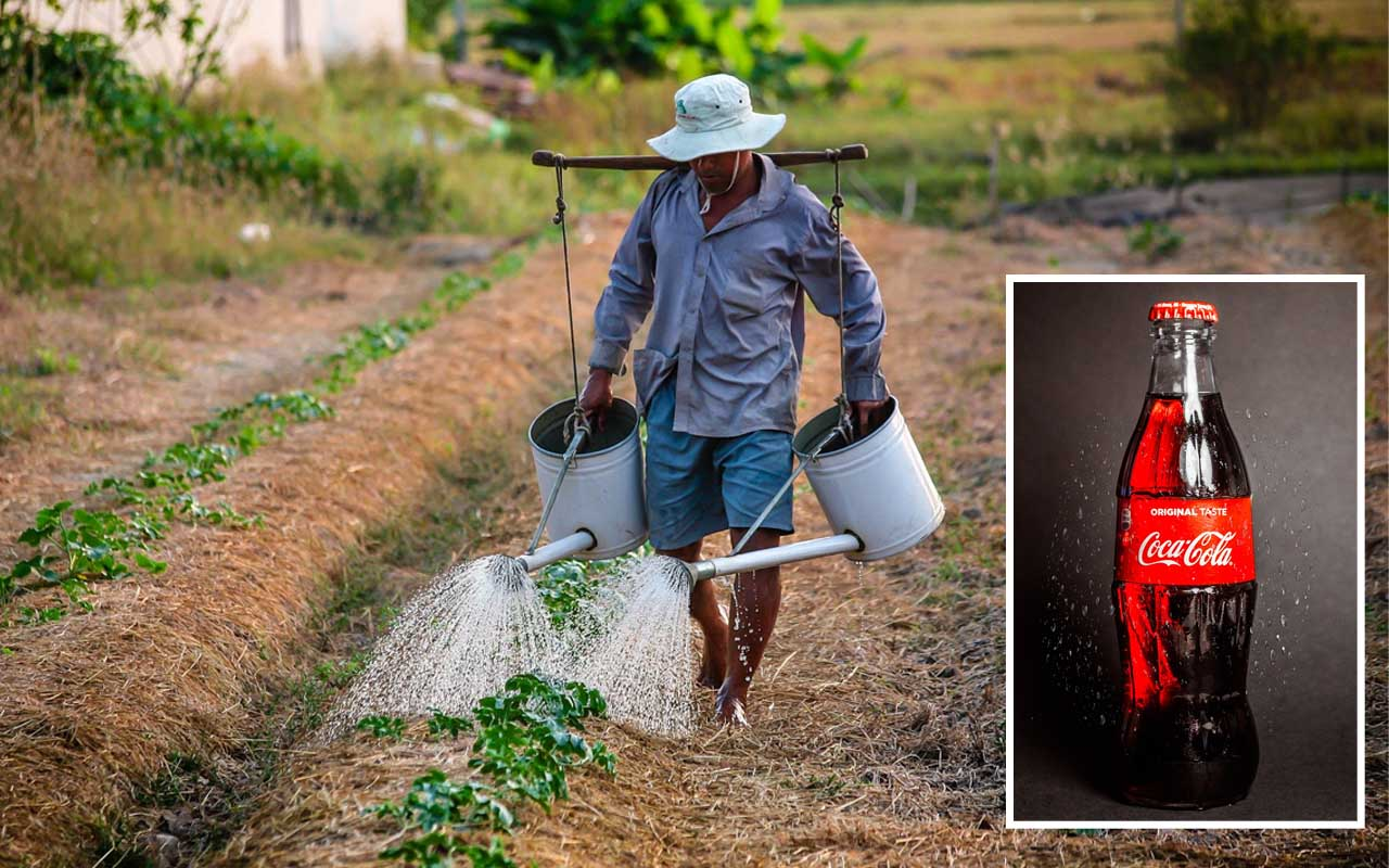 farmer, life, people, facts, Coca-Cola, drink, India