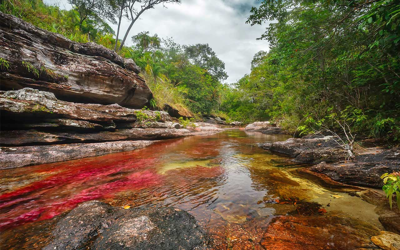Caño Cristales, Colombia, facts, life, travel, people