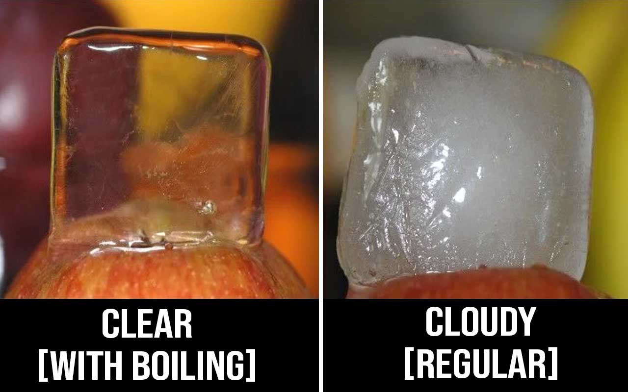 ice cubes, worth, facts, life, people, science