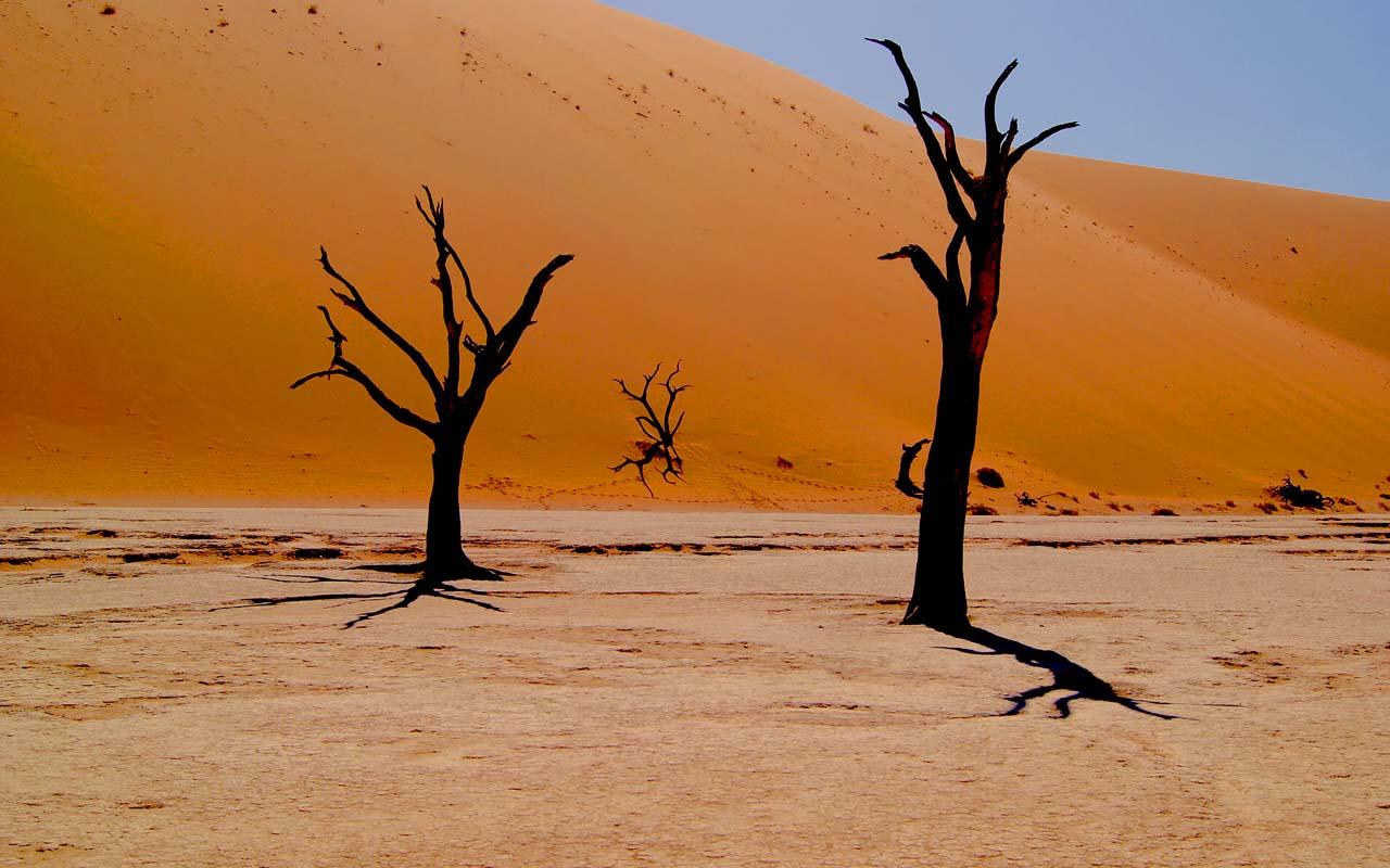 Deadvlei, Namibia, facts, desert, life, photography, nature, optical