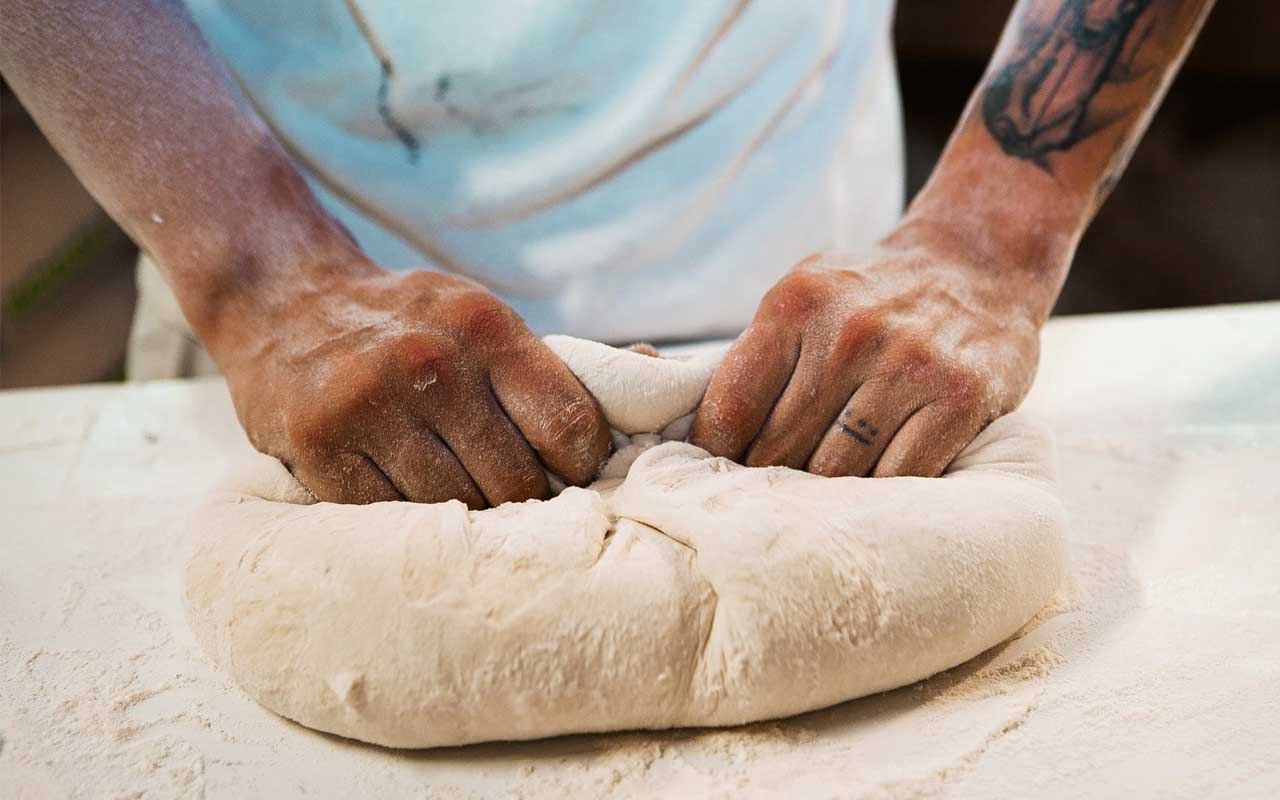 bread dough, facts, people, life, dog, cats, animals, pet