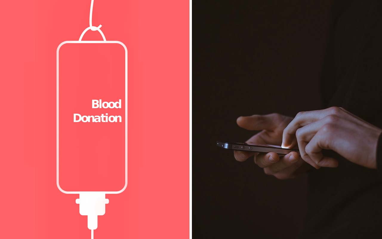 donation, facts, science, Sweden, people, text message