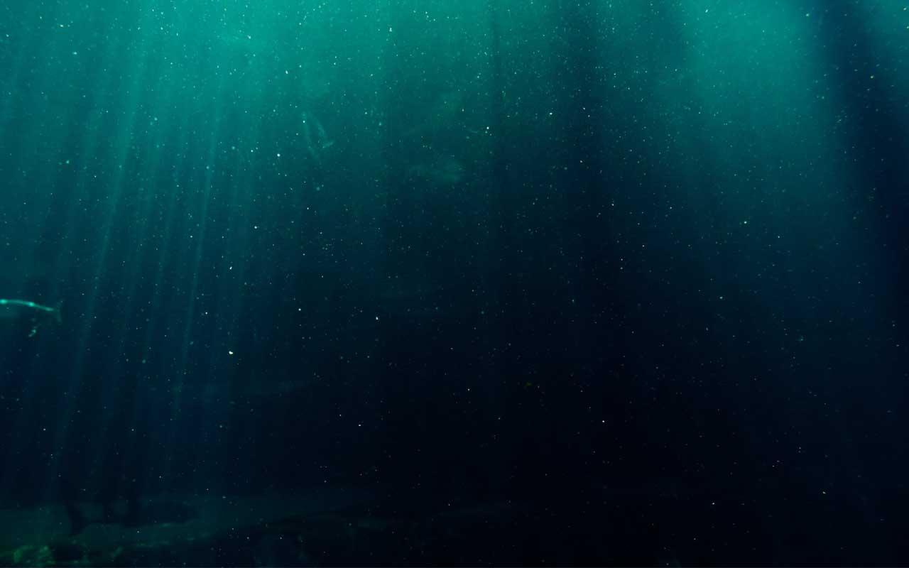 ocean, dark, light, facts, science, entertainment