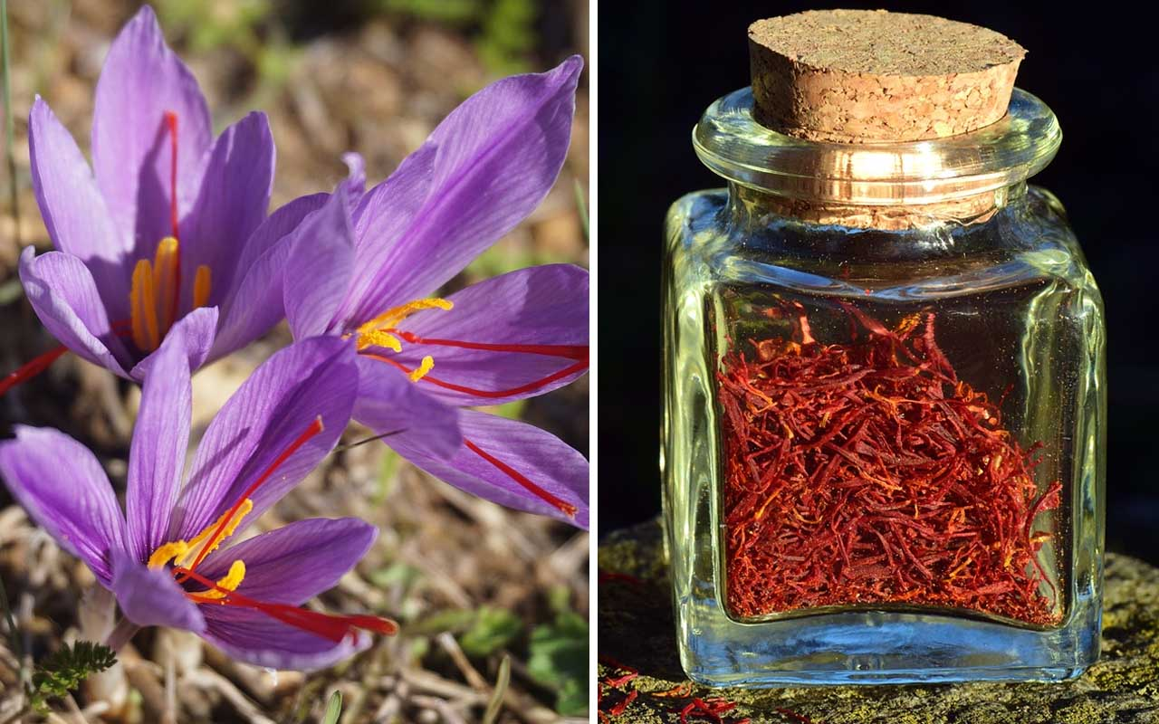 Saffron, food, spices, bottle, expensive, spice, cooking, baking