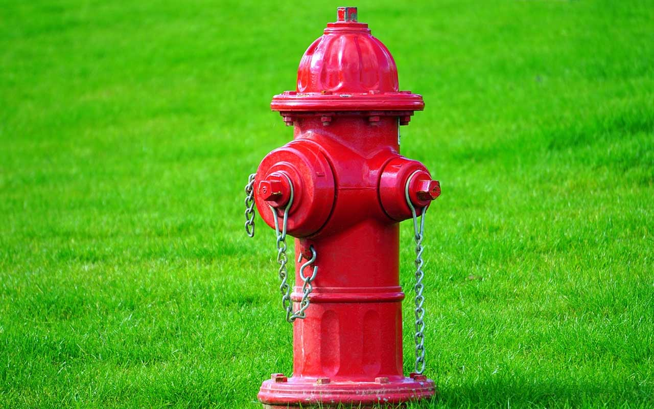 fire hydrant, facts, history, amazed, life, people