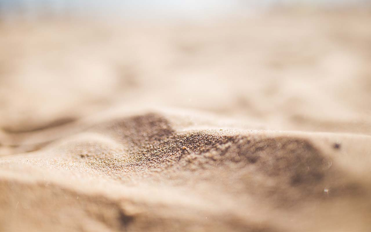 sand, beach, facts, life, people, exercise, science