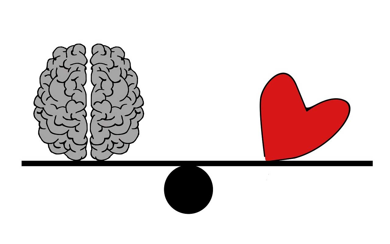 brain, heart, life, facts, people, weird, body