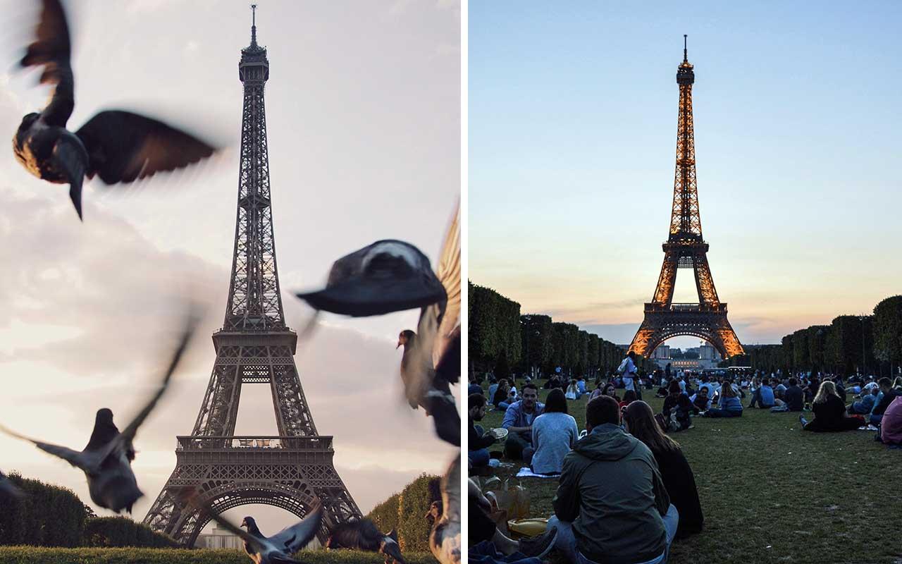 Eiffel Tower, spots, tourist, destinations, life, facts, adventure, wanderer