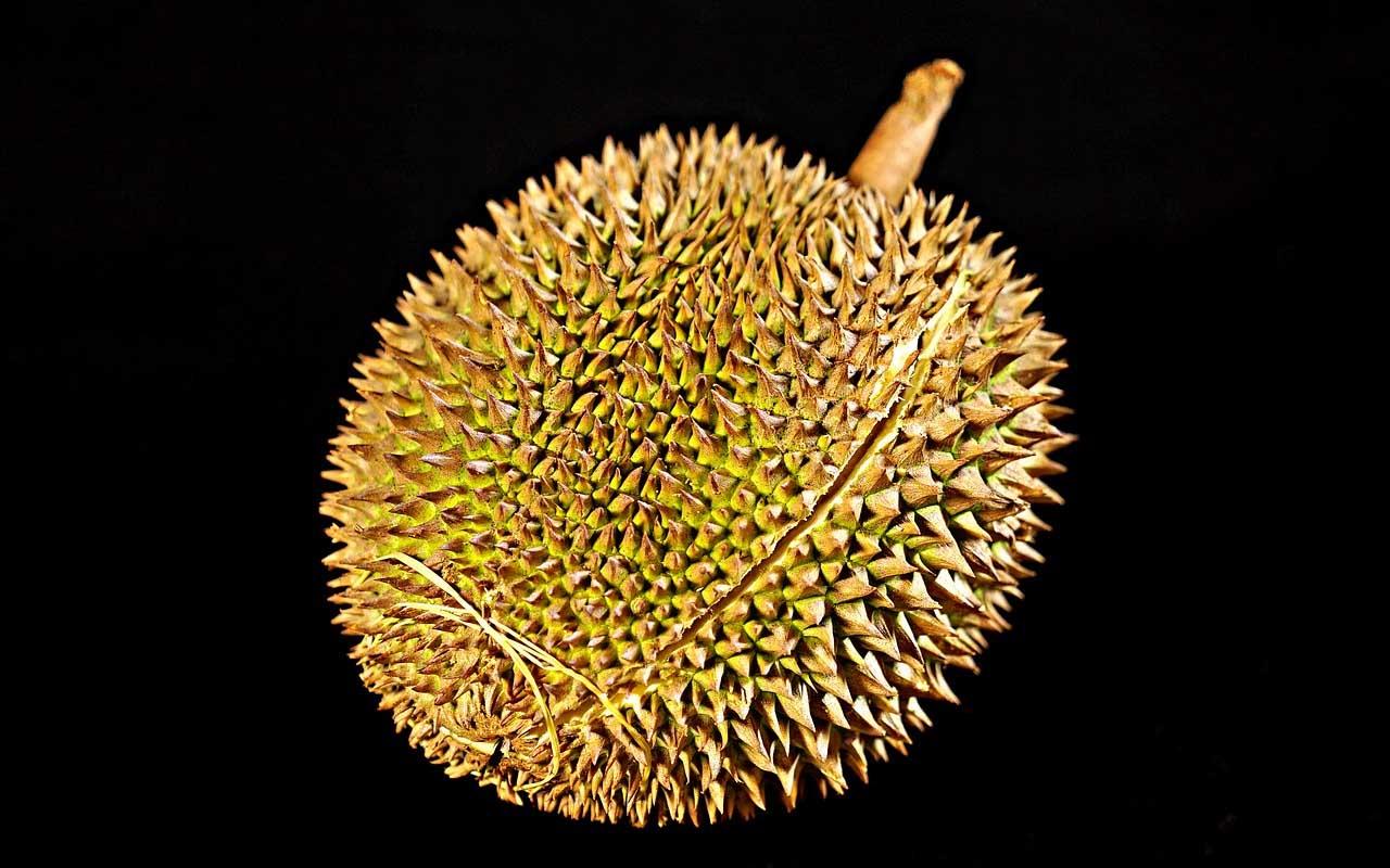 Durian, fruit, Vietnam, Asia, foods, people, life