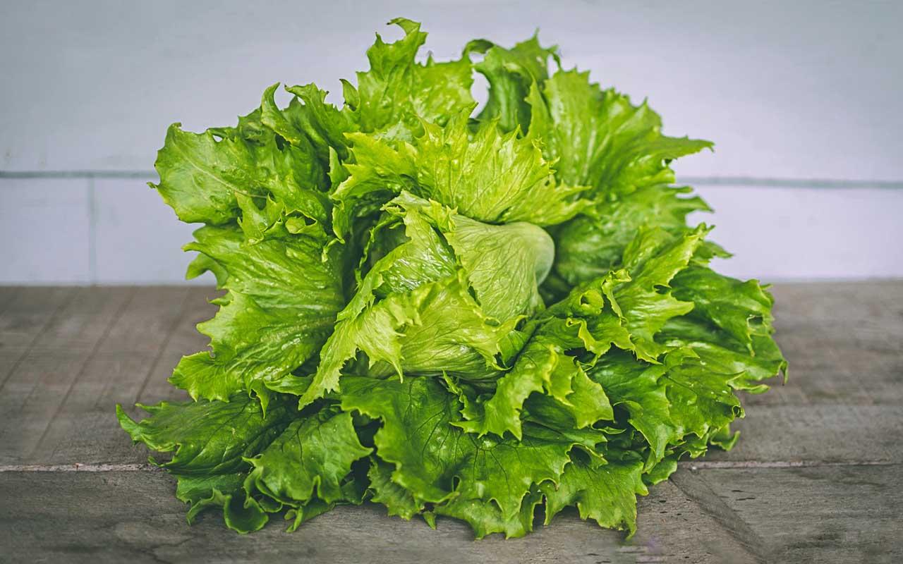 lettuce, vegetable, Canada, green, veggie, foods