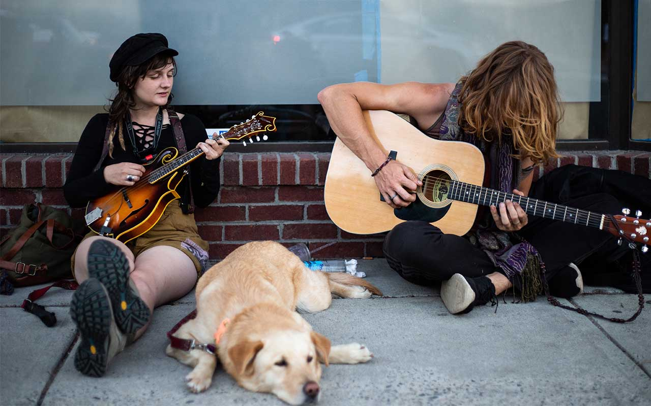dogs, music, humane, animals, life, people