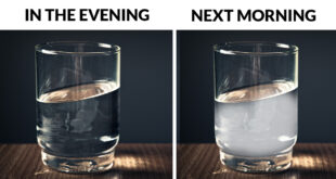 glass of water, people, life, science, facts, entertainment, sleep