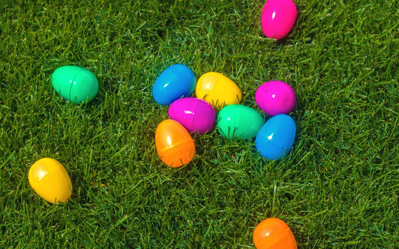 Easter egg, grass, traditions, facts, life, people, weird