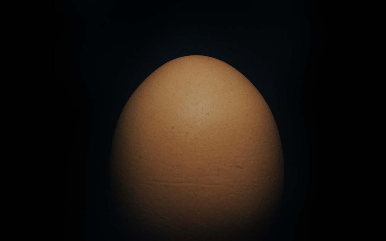 egg, Humpty Dumpty, cartoon, old, rhyme, life