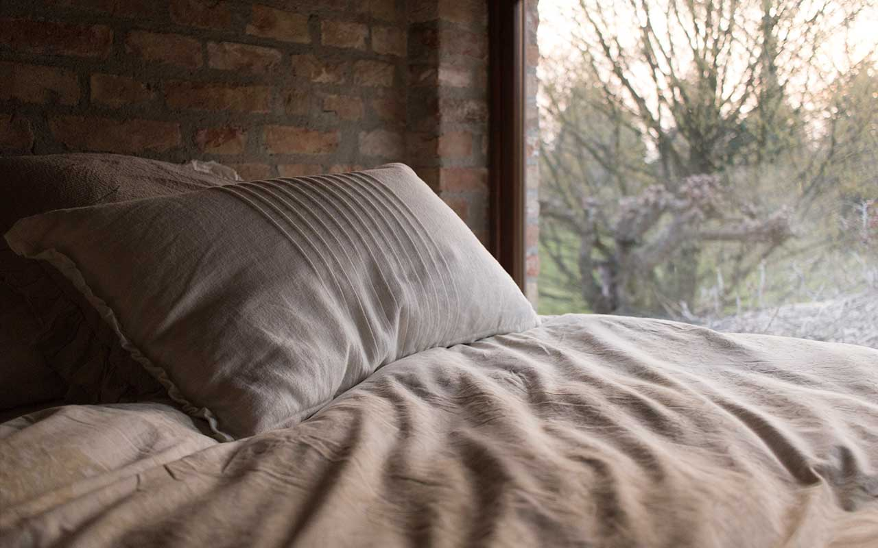 pillow, mattress, germs, germiest, place, bedroom, bed bugs, micro organisms, facts, science