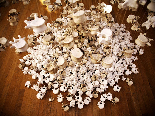 Stephanie Inagaki Scupture Untitled 2008 bones
