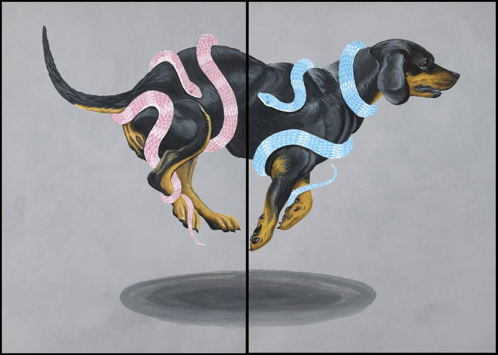 blackdogweb