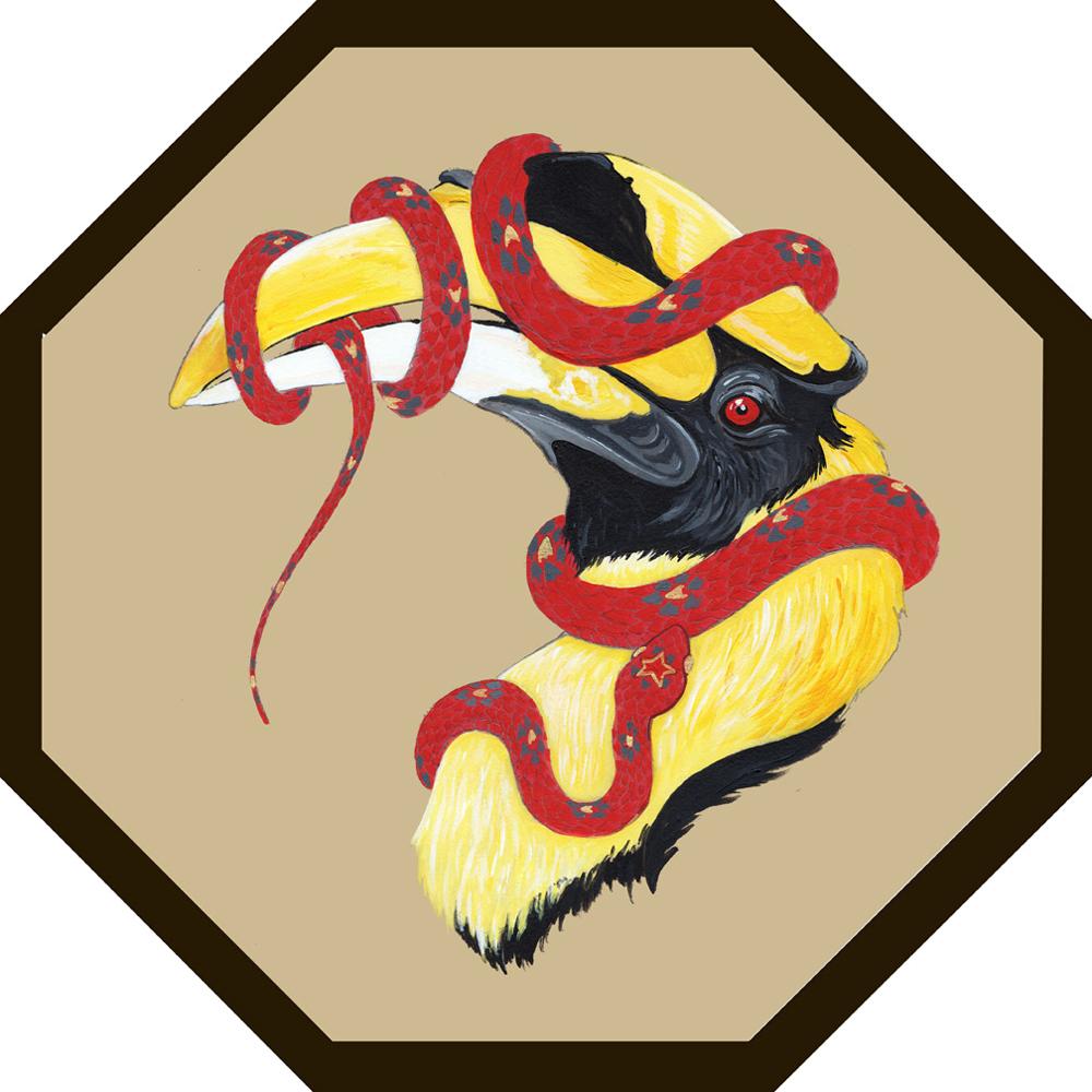 hornbillweb