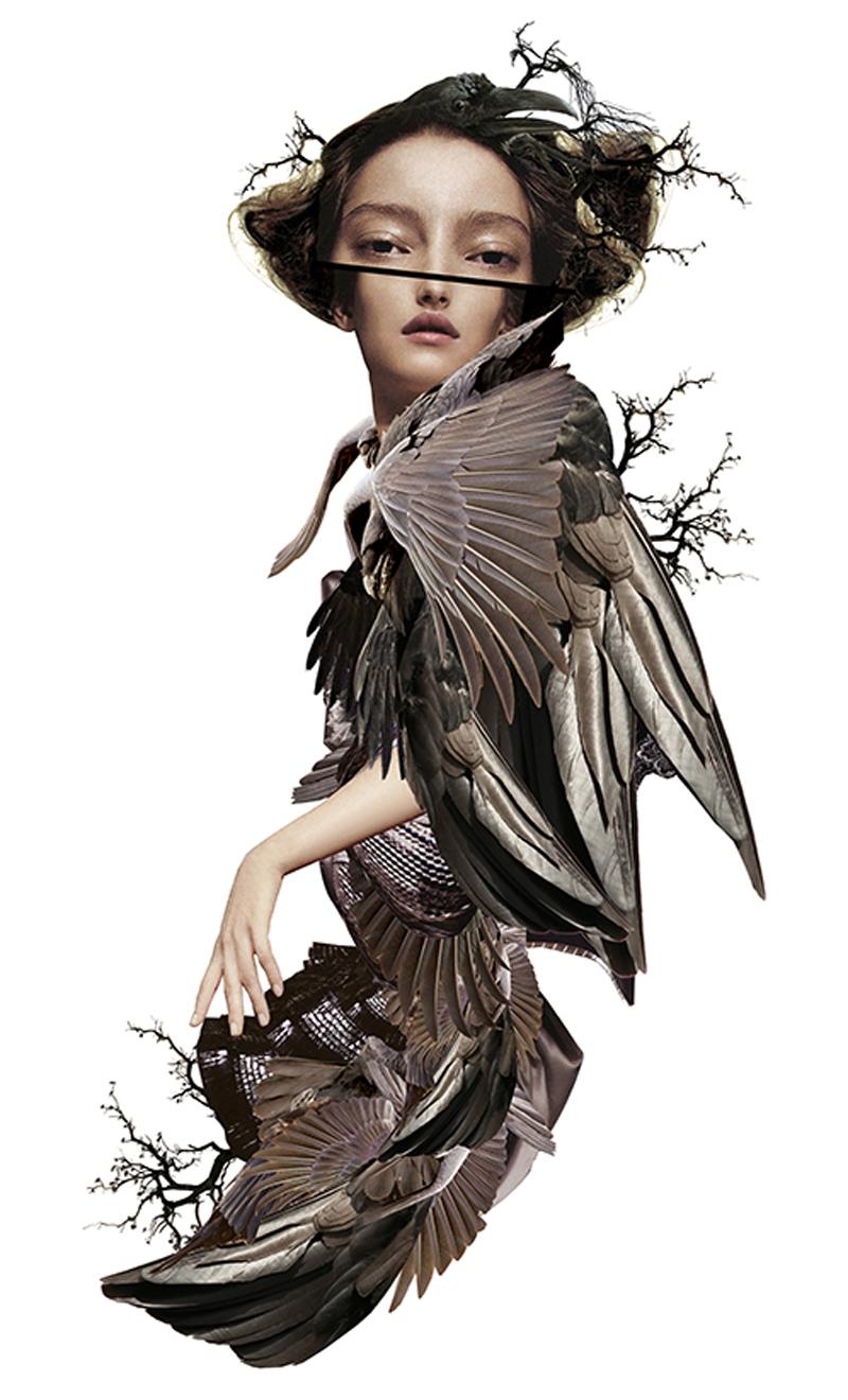 maren-esdar_phobia-ornithophobia_beautiful-bizarre