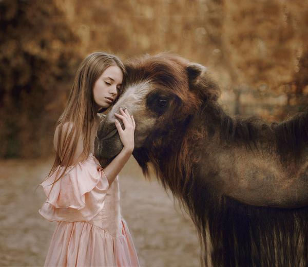 Katerina Plotnikova Photography Camel