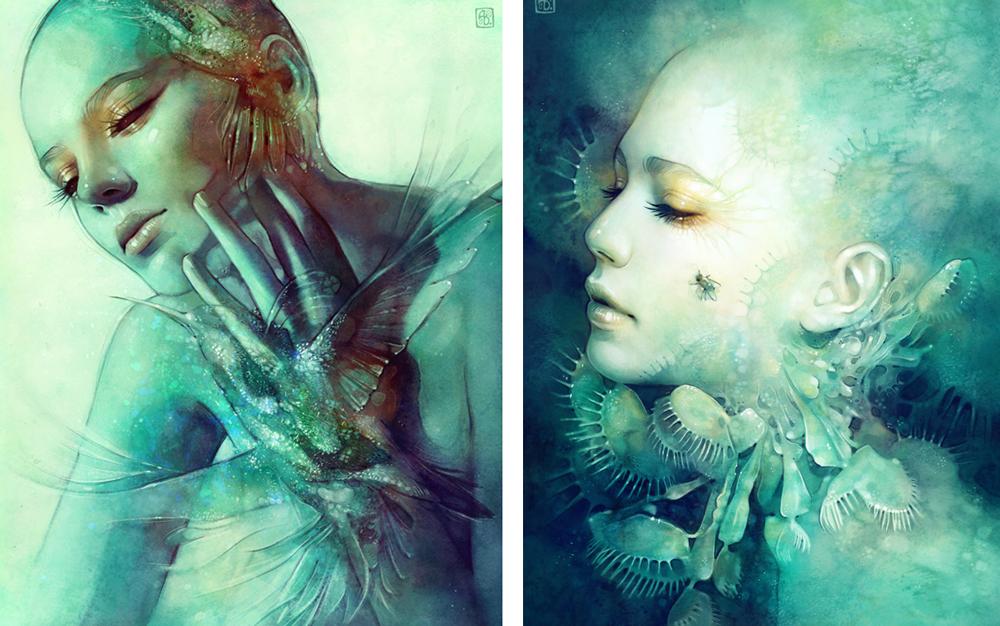 anna dittmann - digital illustration
