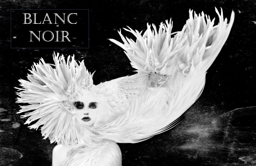 sneak peek - BLANC NOIR