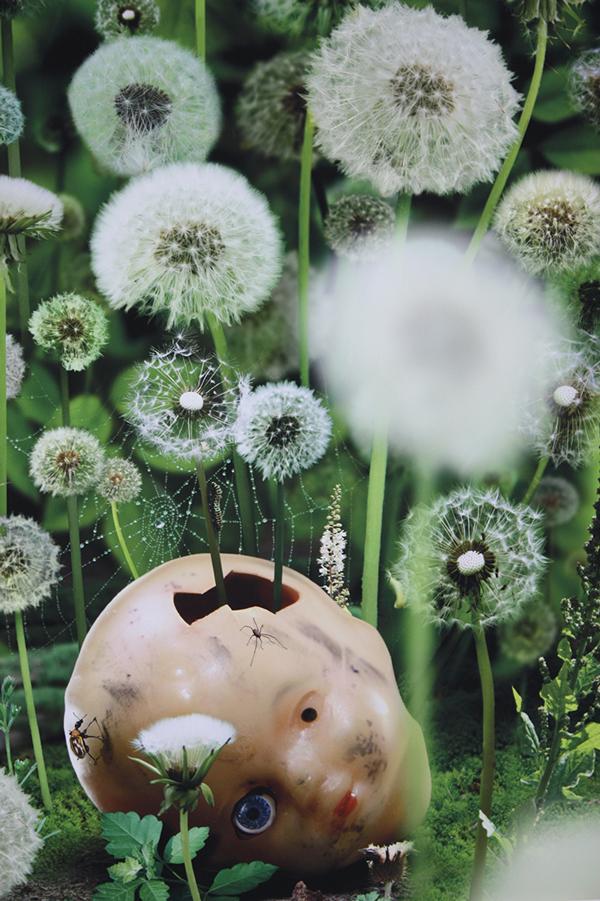 Ruud Van Empel Digital Art Photography 011