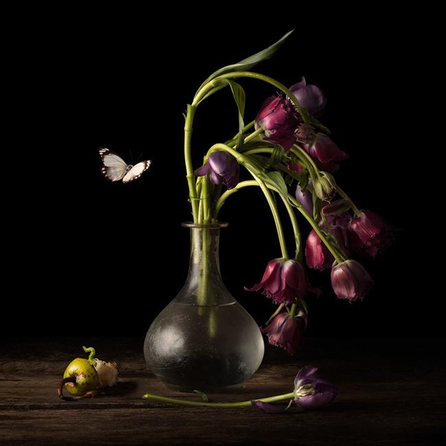 Alexia Sinclair_beautifulbizarre_001