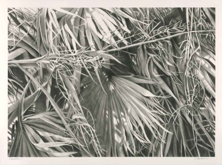 catherine ruane, Bleicher Gallery, Grayscale Wonderland