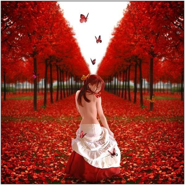 picsy_beautiful_bizarre002