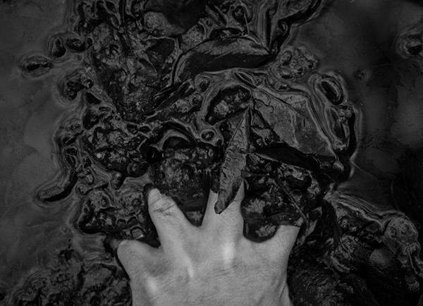 beautiful_bizarre_creatures-of-the-dusk_Aleksei-Kazantse Moist Mother Earth