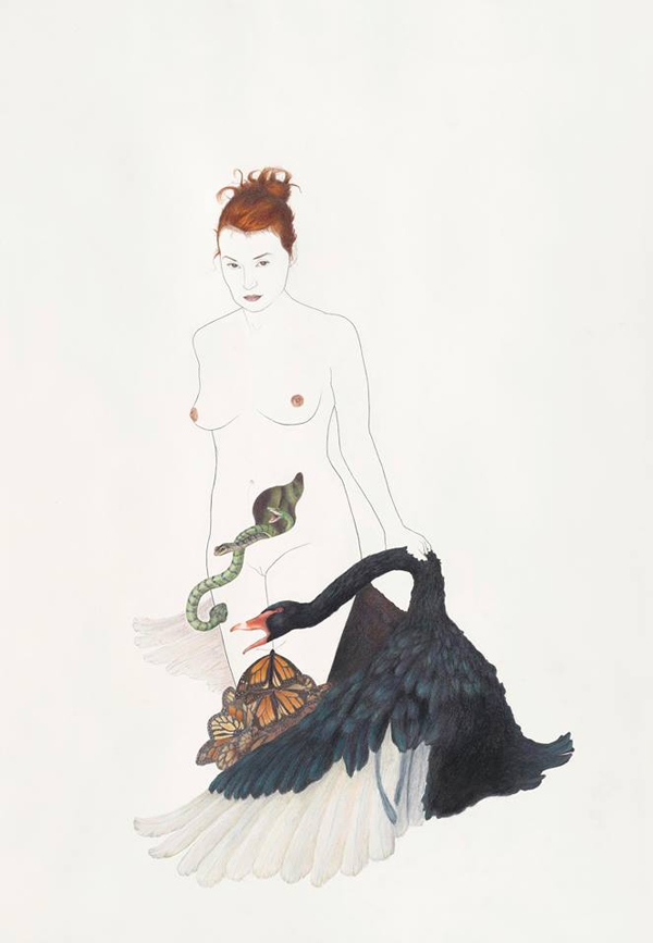 Lauren Levato Coyne Art