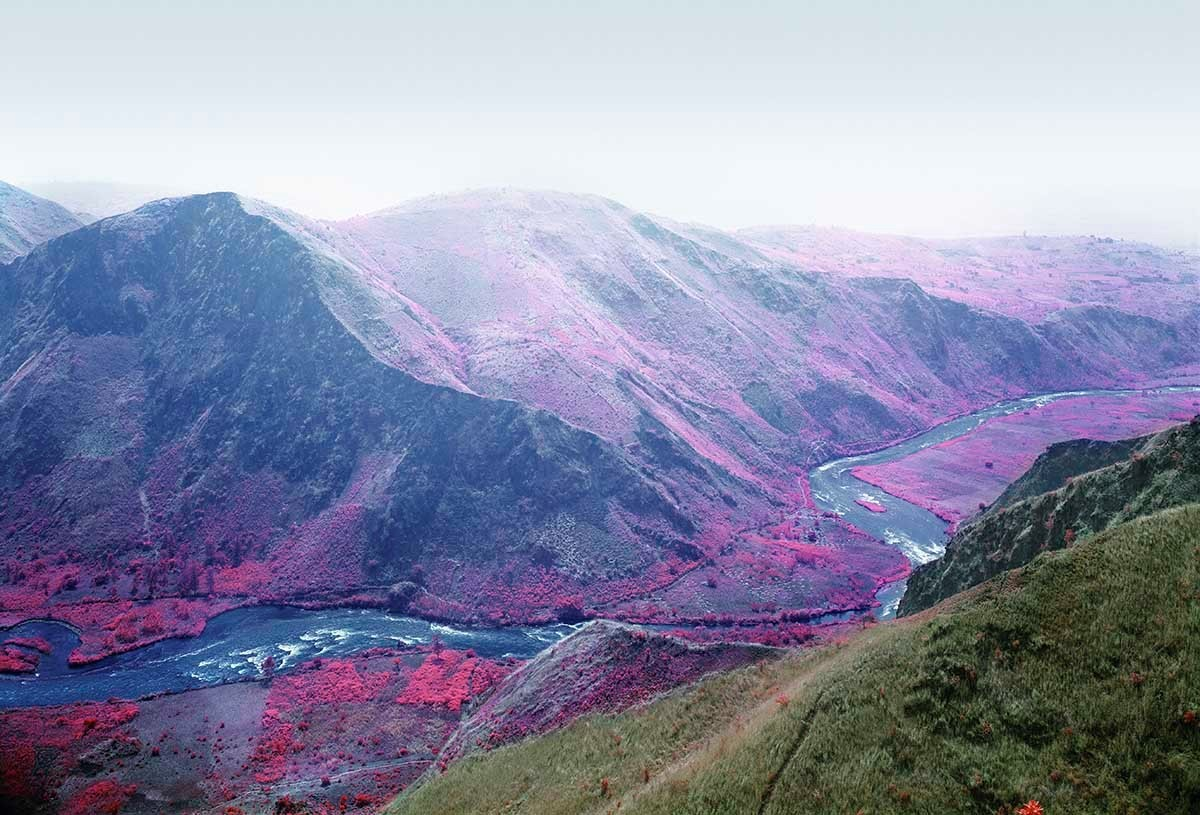 Richard_Mosse_beautifulbizarre_15