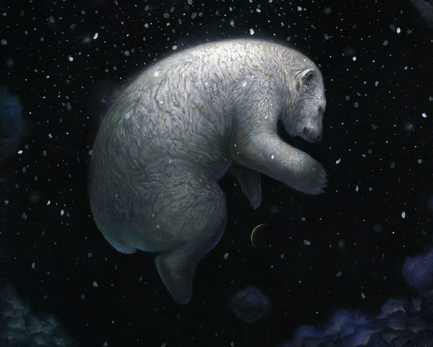 KiSung Koh polar bear