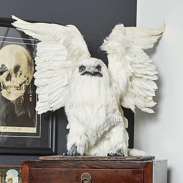 taxidermy griffin sculpture artist Nickas Serpentarius