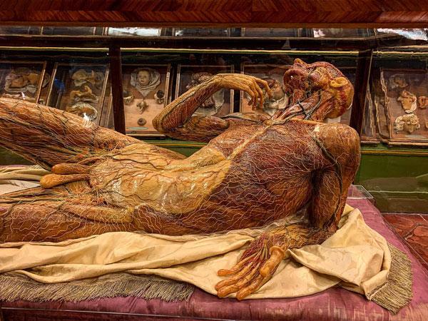 La Specola Museum of Anatomy