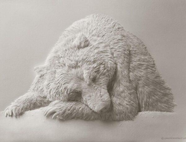 calvin nicholls_paper sculptor of bear