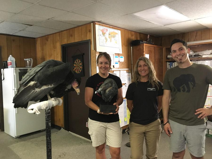 LA Zoo Condor Team