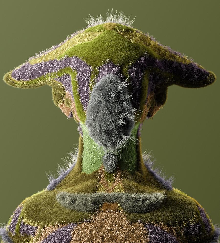 beautiful bizarre Vinicius Soares  grass creature
