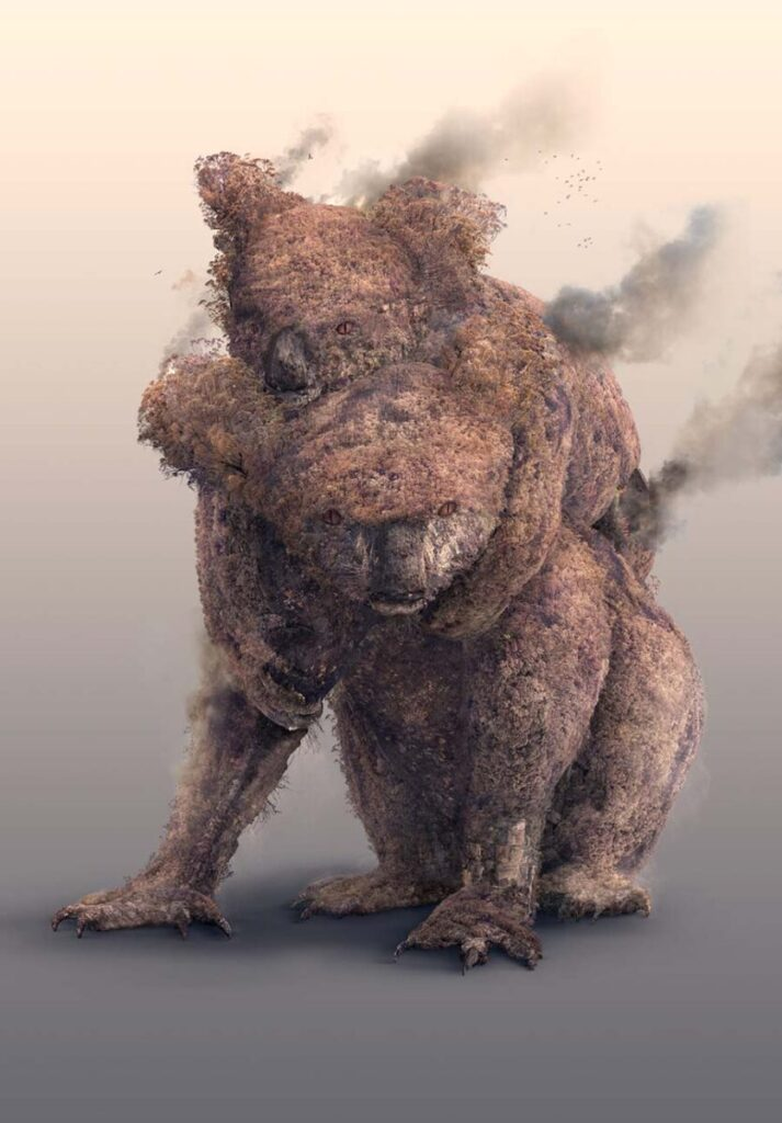 Josh Dykgraaf burning koalas
