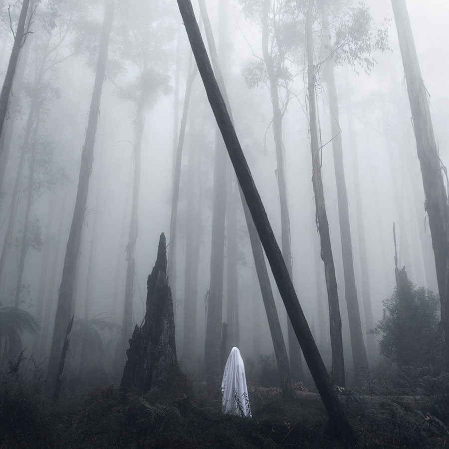 Nathan Milner ghost sheet in woods