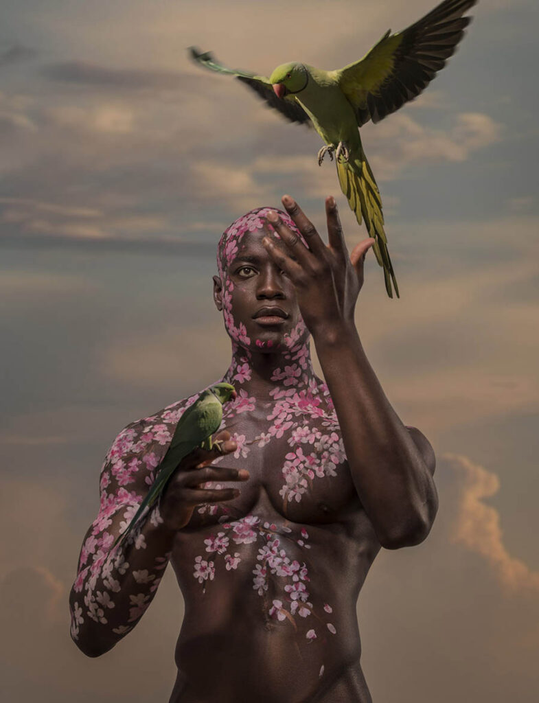 Josh Brandao man and parrots beautiful bizarre