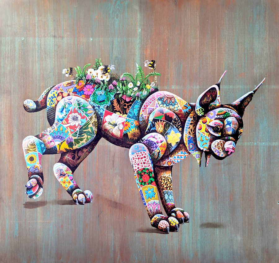 Louis Masai cat animal  Beautiful Bizarre