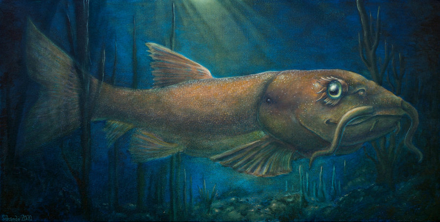 Ricky Schaede river fish