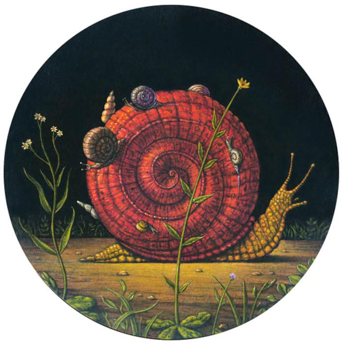 Marc Burckhardt snail
