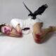 Ciane Xavier-art